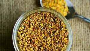 Edible bee pollen
