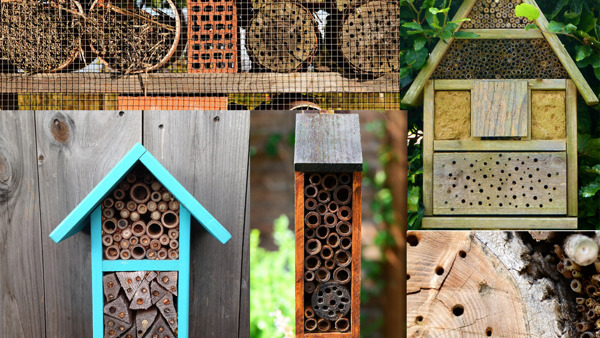 montage of bee hotels