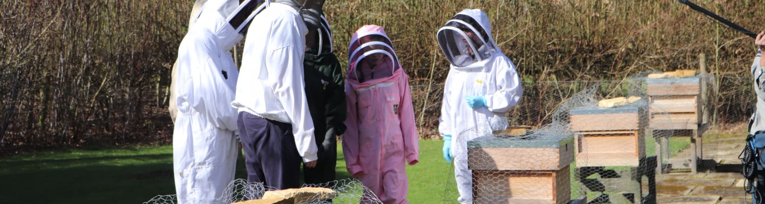 Team chosen for International Meeting of Young Beekeepers 2019