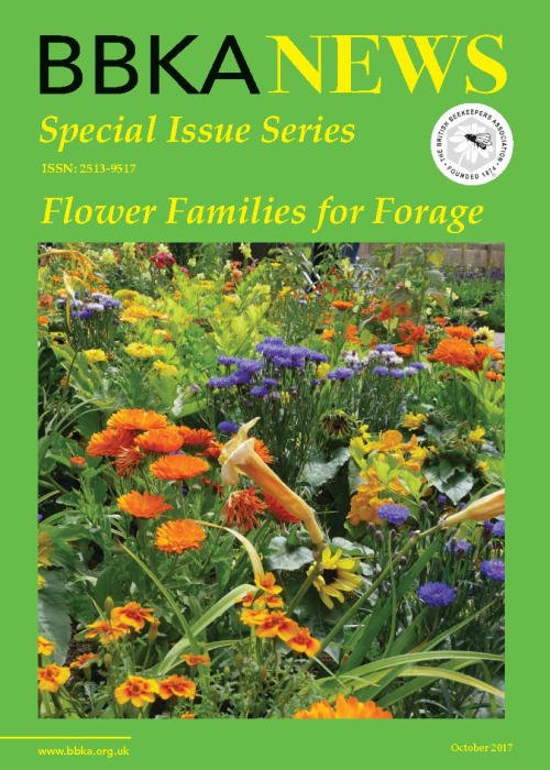 BBKA News – Flower Families for Forage