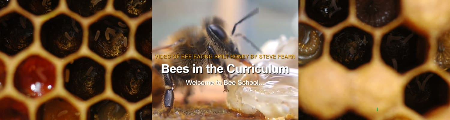 bees-in-the-curriculum