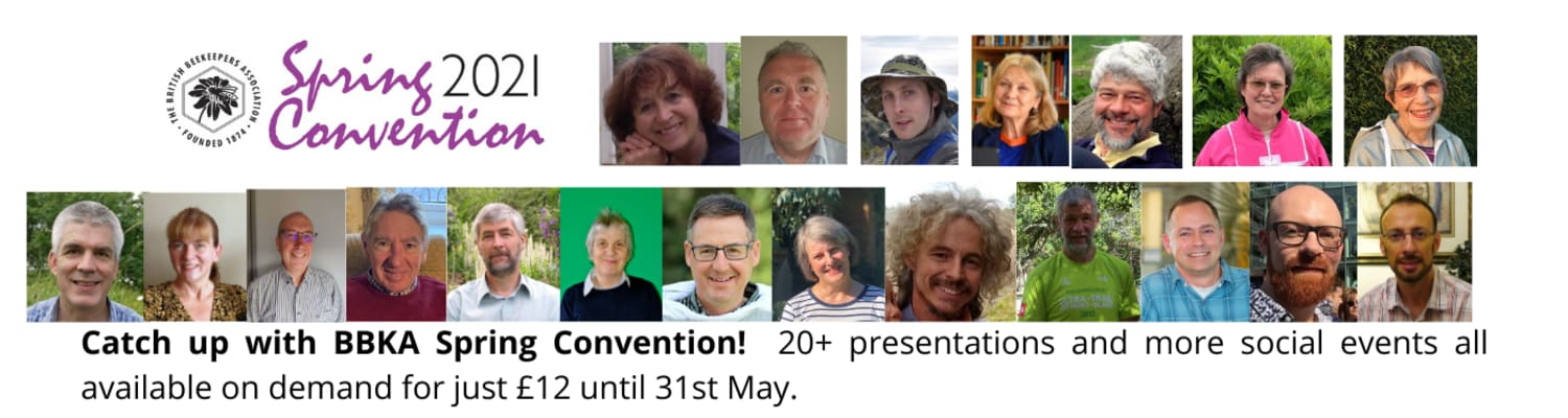 about-spring-convention