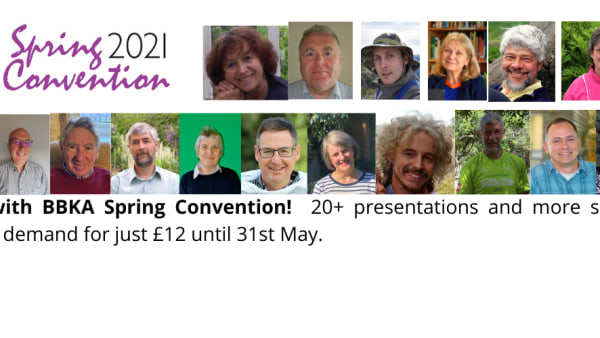 Catch-up on Spring Convention