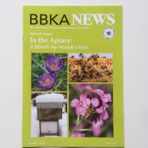 BBKA News – In the Apiary