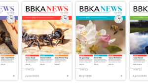Reading BBKA News online